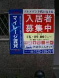 20040910135239.jpg