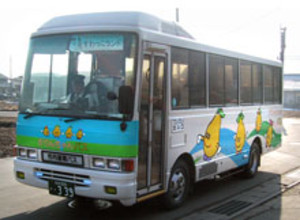 Karin_bus