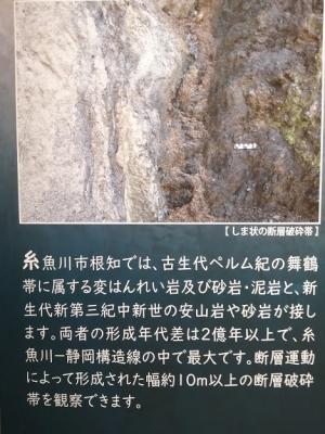 Photo_20210625104201